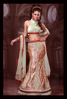 Lengha Choli Design
