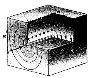 lineas de campo magnetico creado por una corriente rectilinea