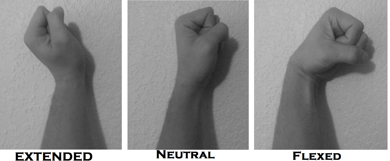 extended wrist position, neutral  wrist position, and flexed wrist position
