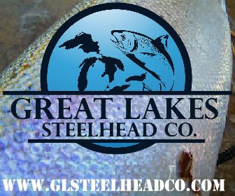 Great Lakes Steelhead Co.
