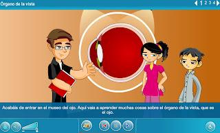 http://www.juntadeandalucia.es/averroes/carambolo/WEB%20JCLIC2/Agrega/Medio/El%20cuerpo%20humano/Los%20sentidos/contenido/cm008_oa01_es/index.html