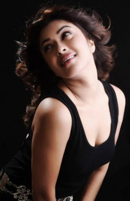 payal ghosh shoot glamour  images