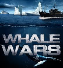 WHALE WARS**SEA SHEPHERD Link de afbeelding