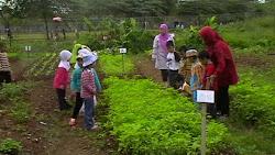 Agriculture School Program