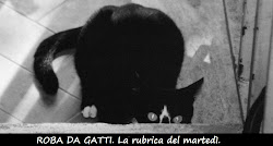 Roba da gatti!