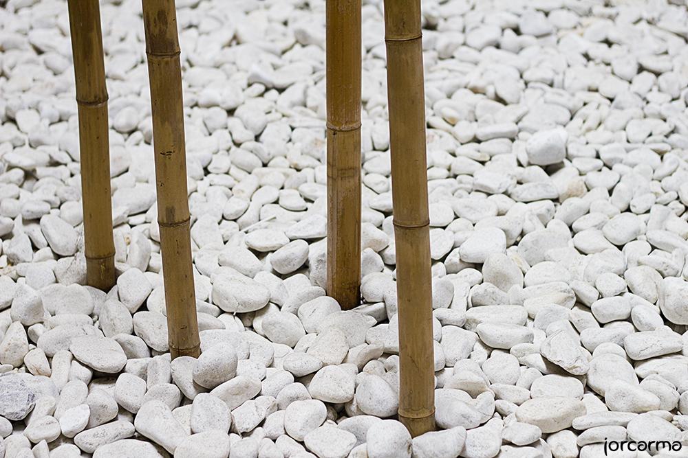 Jard n zen fotograf as de jorcarma for Piedras blancas jardin baratas