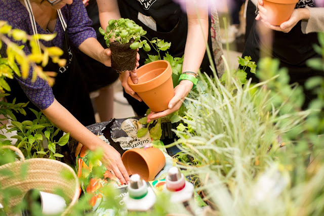 Productos para jardinería compo