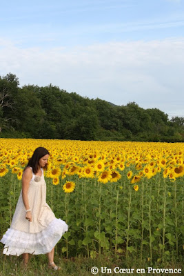 Walk near a field of sunflowers