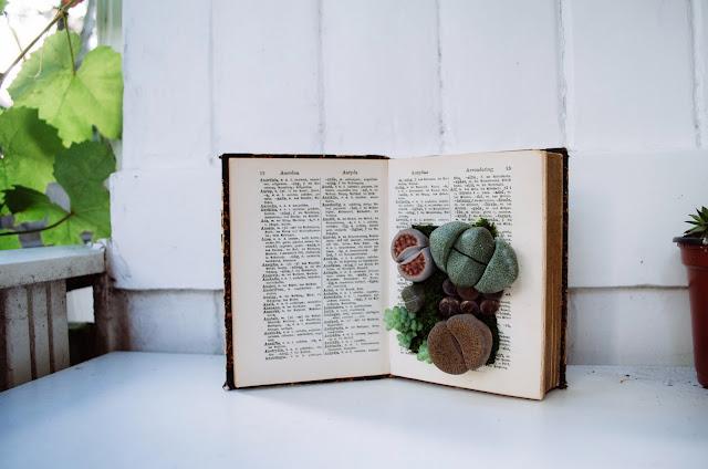 aesthetic fauna // book planter DIY
