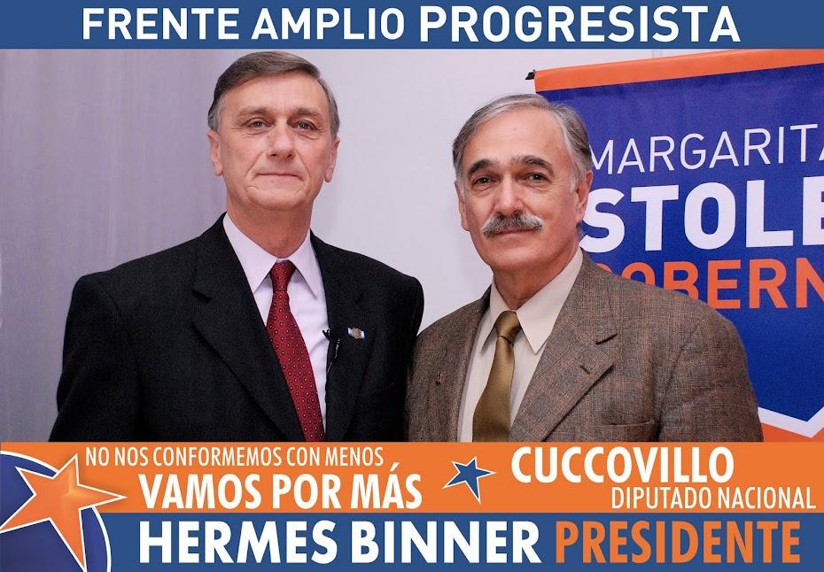 Ricardo Cuccovillo - Diputado Nacional