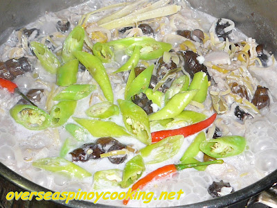Guinataang Susong Pilipit - Cooking Procedure
