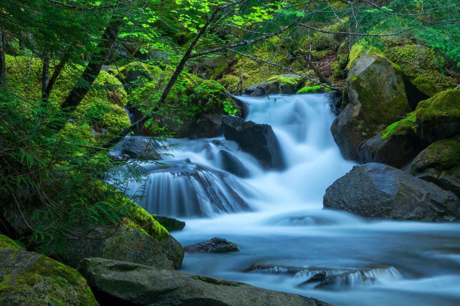 Часто ручей образует небольшие водопадики.