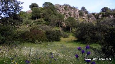Bosque Mediterraneo Parque Natural Sierra Andujar, Jaen