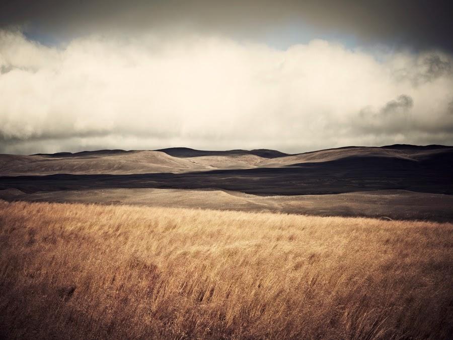 Sandro Diener Photography