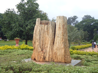 Lalbagh, Bangalore