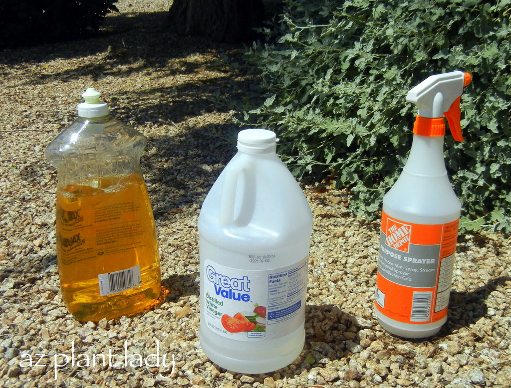 Kill weeds in flower beds - Diy Weed Killer Vinegar Soap