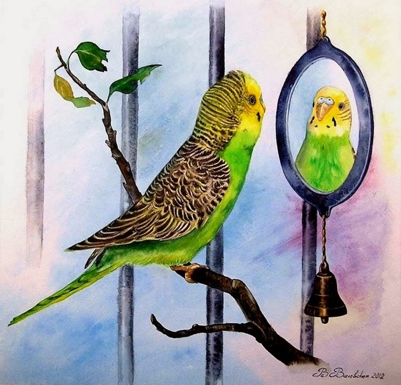 cuadros-de-aves