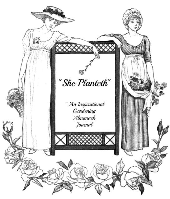 Heroines of the Faith Inspirational Gardening Journal