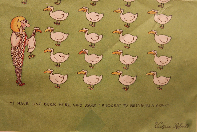 Virginia Roberts comic duck in a row