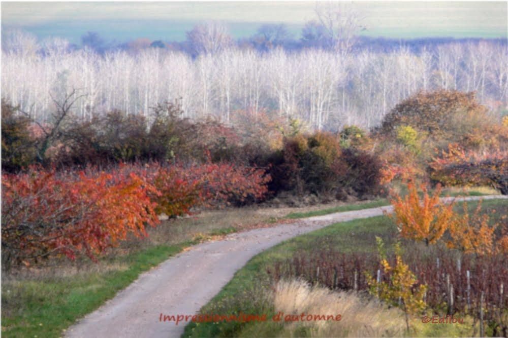 Impressionnisme d'automne, Autumn impression, ИМПРЕССИОНИЗМ ОСЕНИ