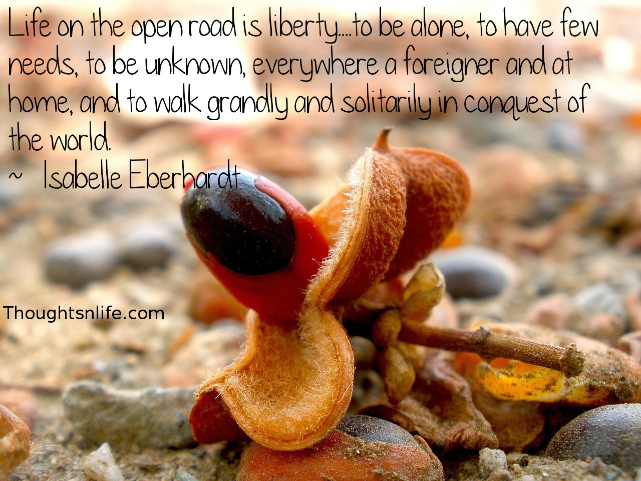 Thoughtsnlife.com: Life on the open road is liberty....to be alone,  to have few needs, to be unknown,  everywhere a foreigner and at home,  and to walk grandly and solitarily in conquest of the world.  ~   Isabelle Eberhardt