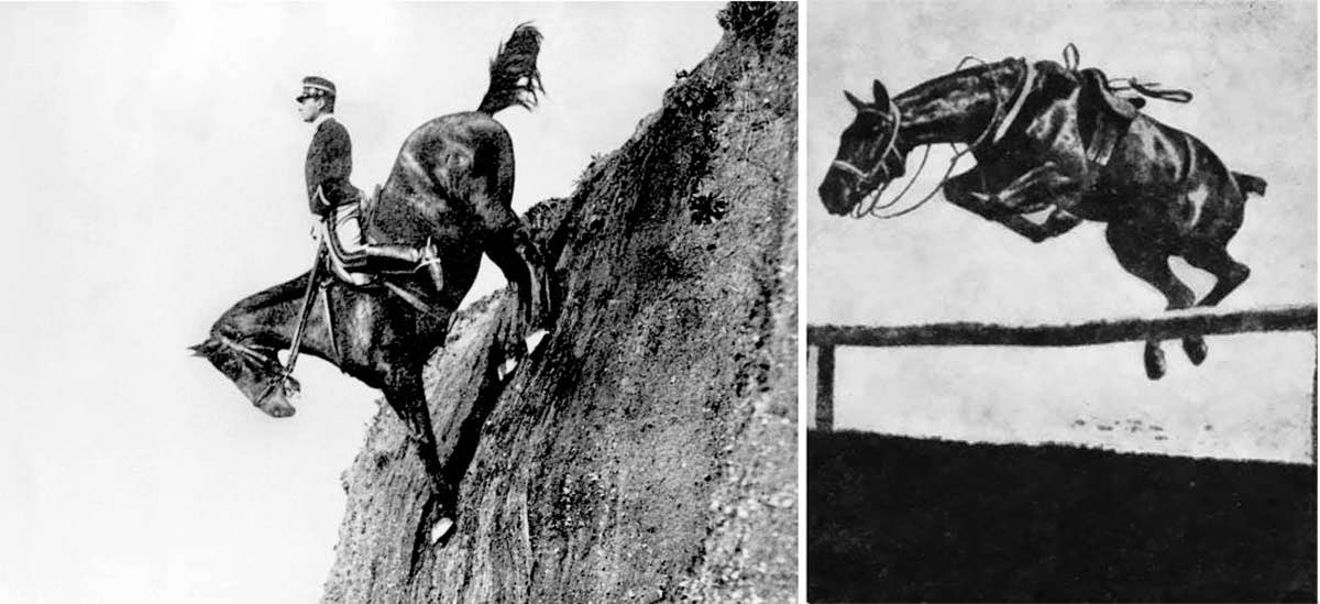 Caprilli's position made horses much more willing to jump obstacles, now that they were free of interference.