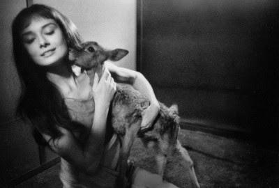 Las mascotas de Audrey Hepburn
