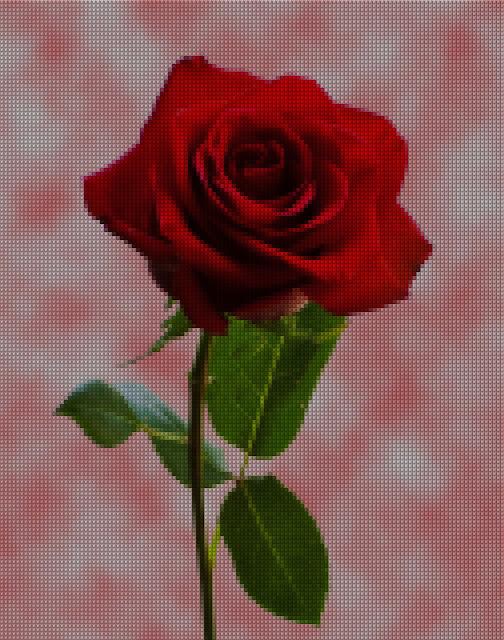 Digital Kristik - Bunga Mawar Merah