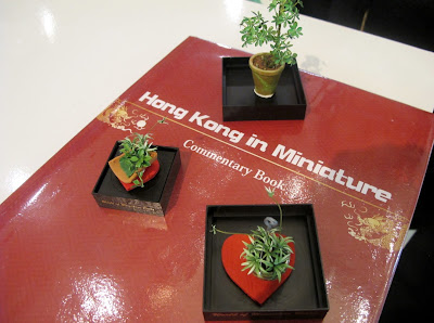 Three dolls' house miniature plants, arranged on the guest book for the exhibition Hong Kong in Miniature.