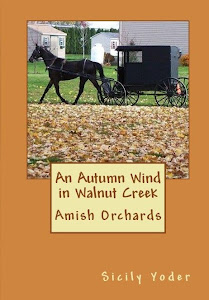 An Autumn Wind in Walnut Creek