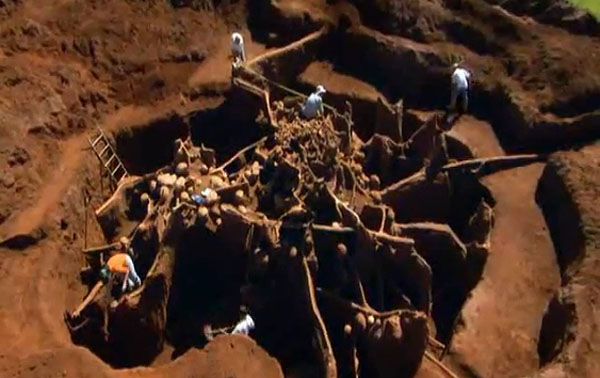Giant Ant Colony Excavated, You won't believe what they build ...