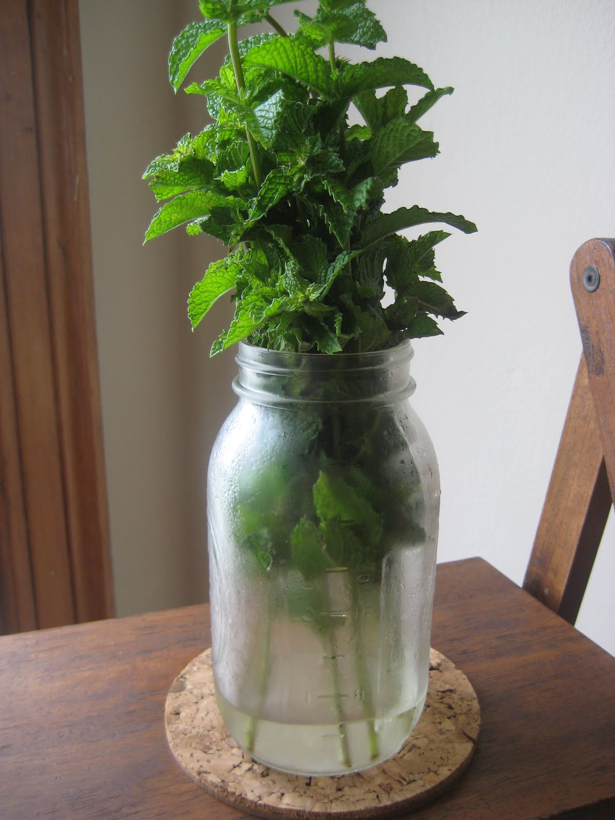 the delicious truth how to properly store fresh herbs including mint. Black Bedroom Furniture Sets. Home Design Ideas