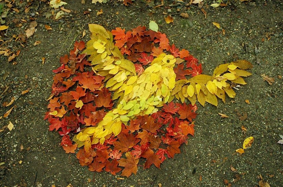 amazing leaf art wallpaper