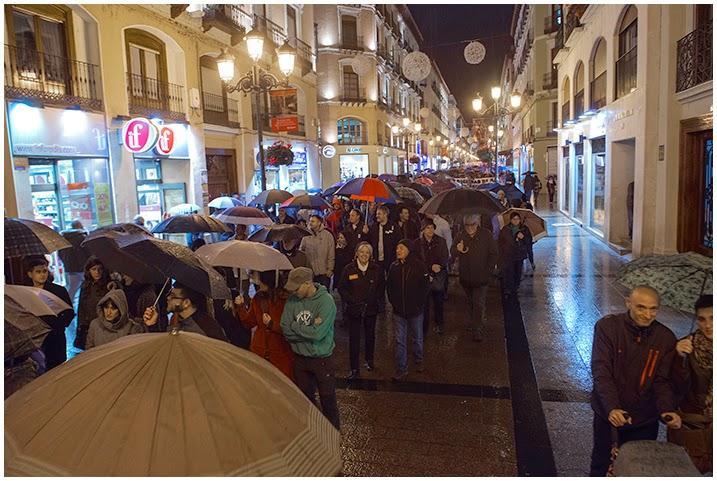 http://primo.com.es/index.php/2014/11/30/manifestacion-pan-trabajo-techo-y-dignidad-que-se-vayan-29-11-2014-zaragoza-6/