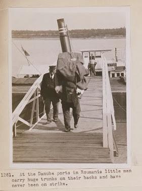 Barbatii din porturile Dunarii