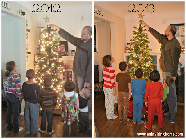 measuring heights by the tree