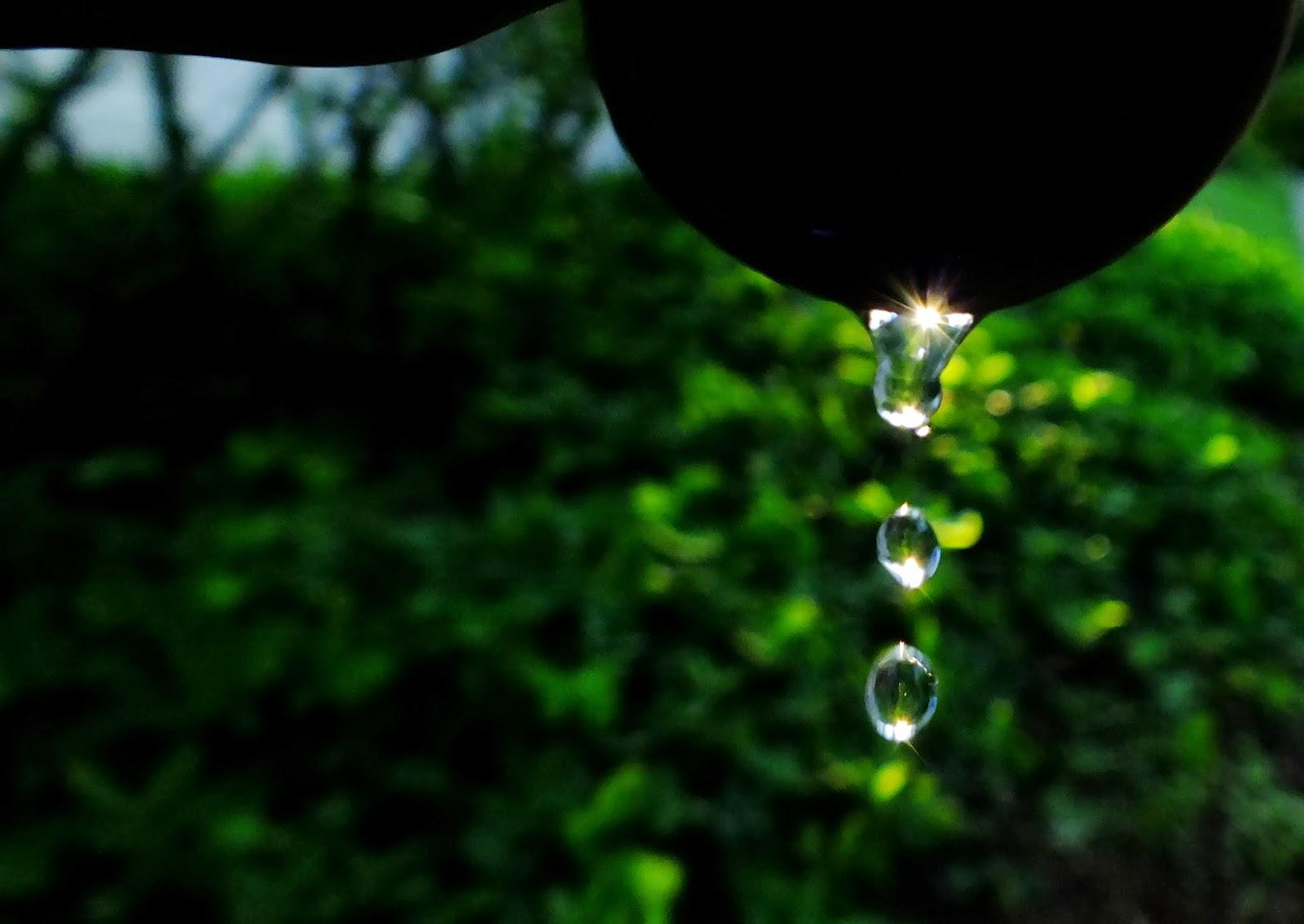 http://aprendendocomasimagens.blogspot.com/2013/11/o-luminar-da-existencial - Indícios eruditos que revelam a existência de cada ser, destilando com a resplandecência o pranto de cada vivência. Que faz transparecer uma jornada para uma nova vida na luz que fortalece, conforta e encanta cada aparência, que com pinceladas nos revela um relevo de cada eclosão da vida. Que deslumbra toda simplicidade captada aos olhos que enxergam a essência da alma...