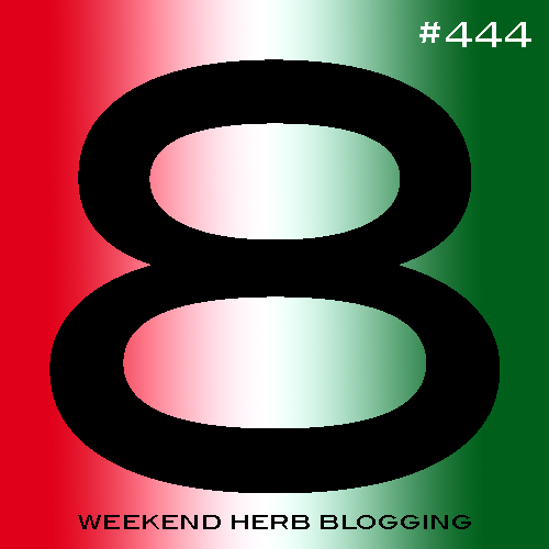 Weekend Herb Blogging #444 Hosting