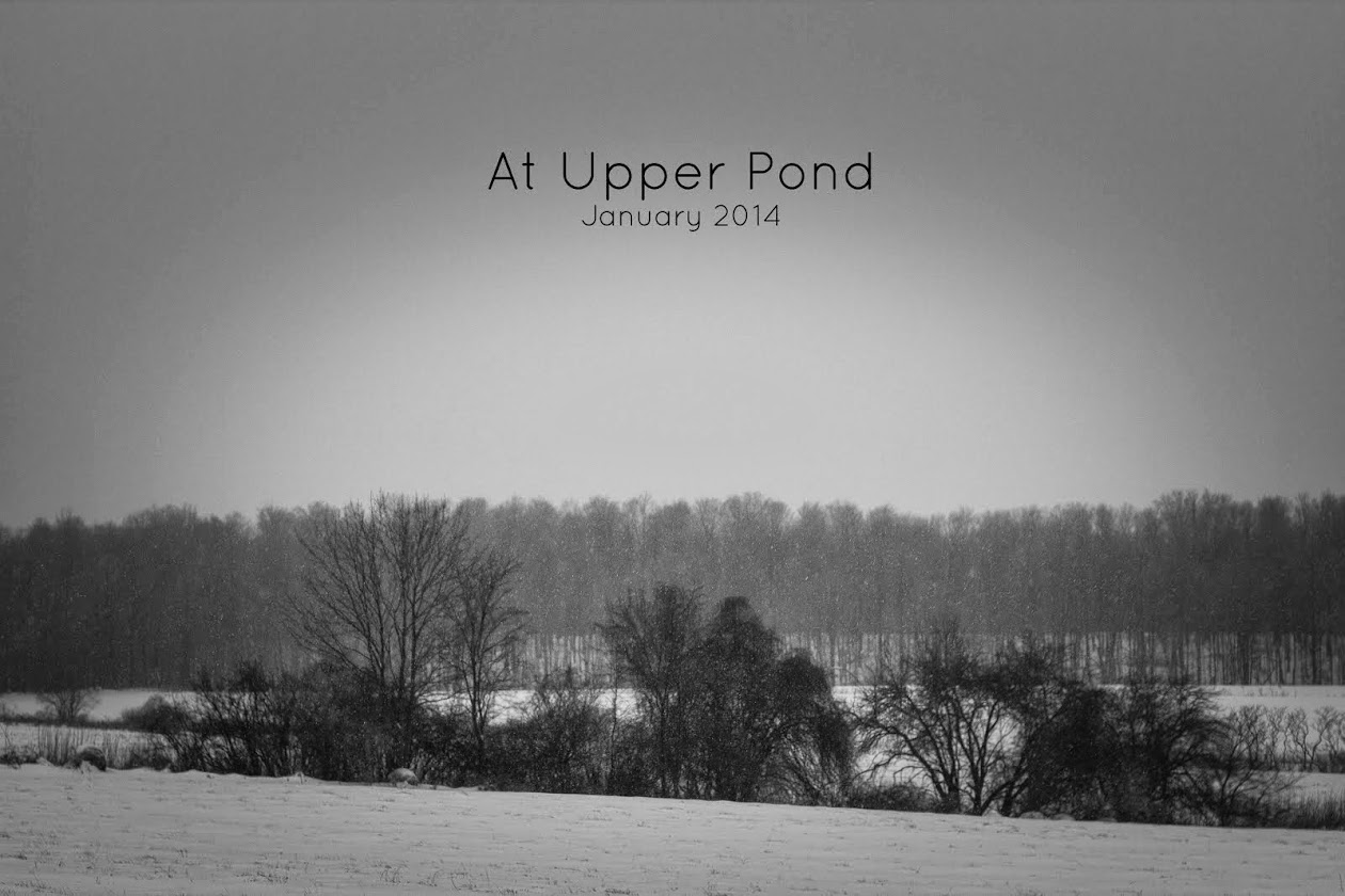 At Upper Pond
