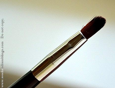 TBS Bodyshop Mini Travel Makeup Brushes Kit Reviews Angled eyeshadow lip blush reviews