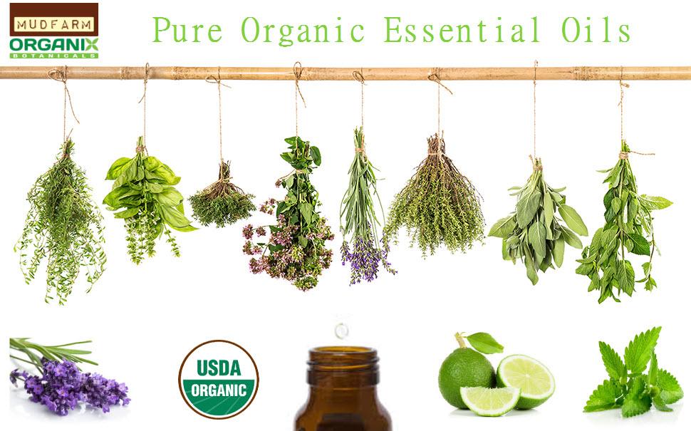 Canada Essential Oils Supplier of 100% Organic Premium Oils