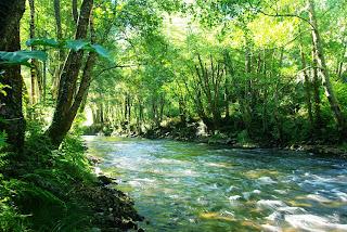 Ibias, Senda del oro, río Ibias