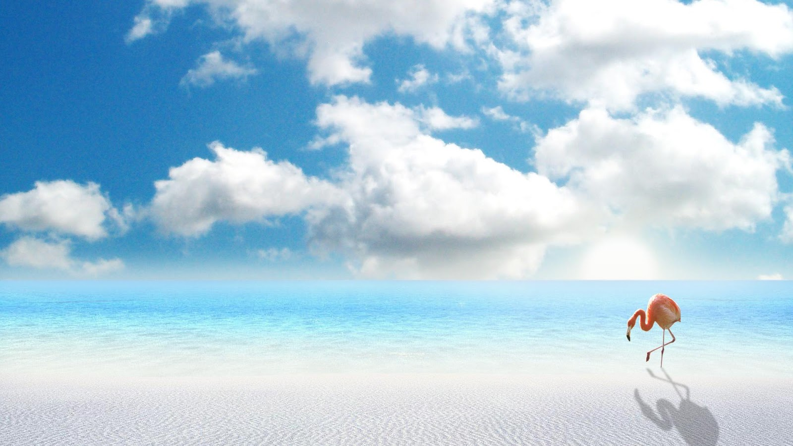 http://1.bp.blogspot.com/-nBkOm6A0res/UHaBxpC162I/AAAAAAAAIr0/pTfIGdeCKhw/s1600/beach-wallpaper-hd-56.jpg