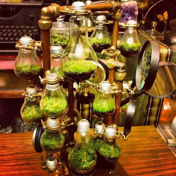 Steampunk Terrarium art Photo by Hamzah Osmun