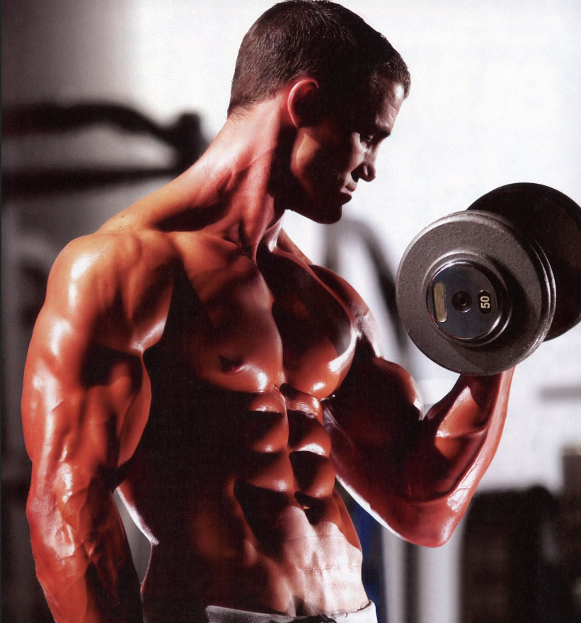 Build Muscle: How to Gain Bulk Weight