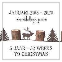 Feest challenge vijfjarig bestaan