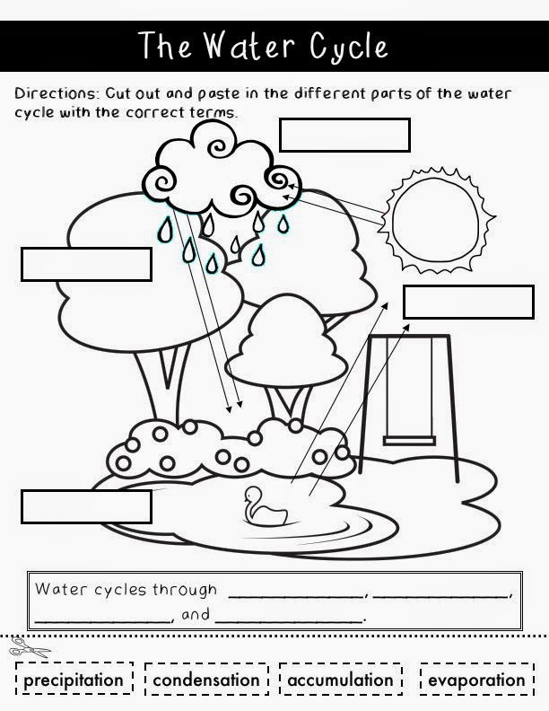 BC curriculum primary science activities