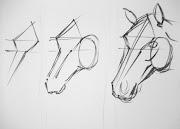Esta es la estructura inicial básica, empezamos por la frente del caballo .