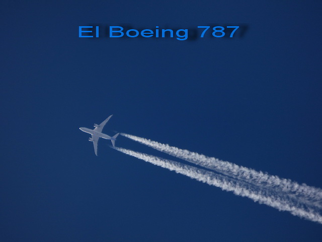 El Boeing 787