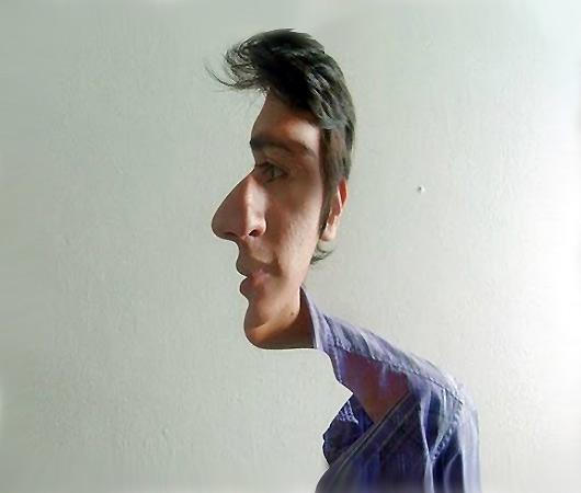 İki Yüzlü İnsan, İki Yüzlülük Optik İllüzyonu